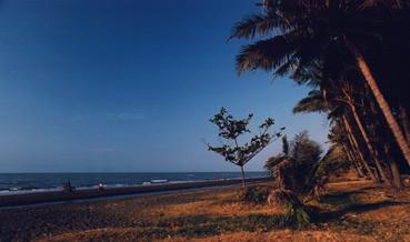 PantaiWiduri