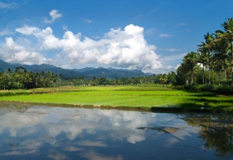 alam desa,Magelang