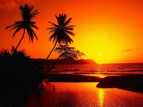 B beach-