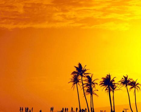 D Hawai